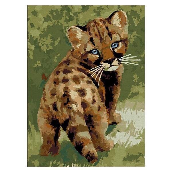 Color KIT Картина по номерам Color KIT Детёныш леопарда, 30х40 см рыжий кот холст с красками по номерам забавные щенки 30х40 см