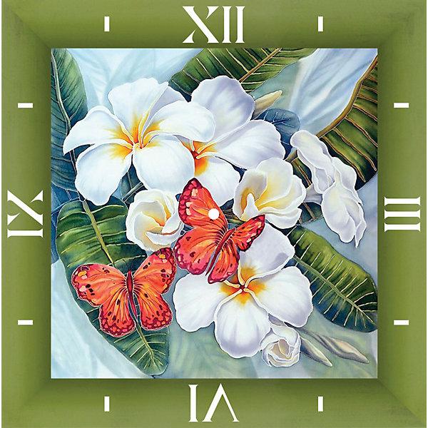 Color KIT Алмазная вышивка Color KIT Алмазные часы Бабочки и магнолии, 30х30 см картина птичка 30х30 см