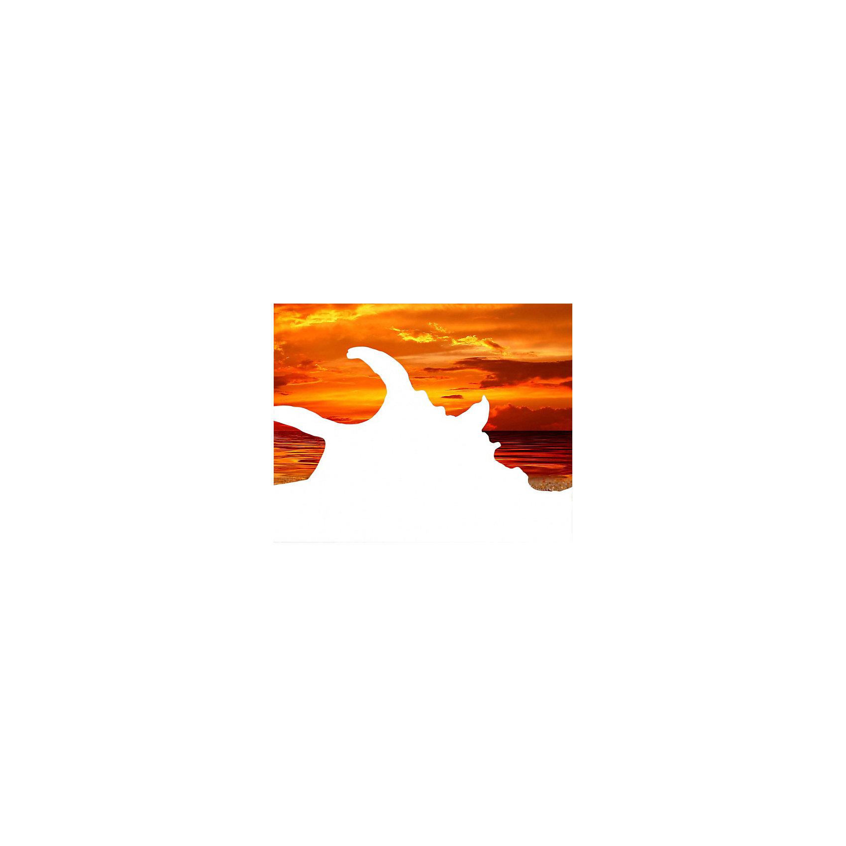 Алмазная картина-раскраска Color KIT