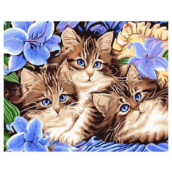 Купить Картина по номерам Color KIT Три котёнка , 40х50 см, Россия, разноцветный, Унисекс