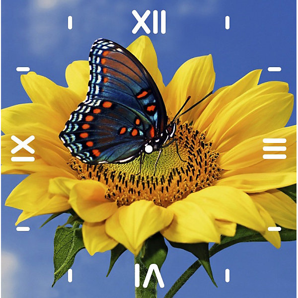 Color KIT Алмазная вышивка Color KIT Алмазные часы Подсолнух, 30х30 см мобильный телефон alcatel 1054d белый 1054d 3balru1