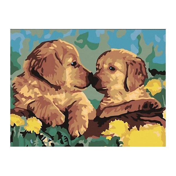 Color KIT Картина по номерам Color KIT Милые щенки, 30х40 см цветной картины по номерам щенки на поляне