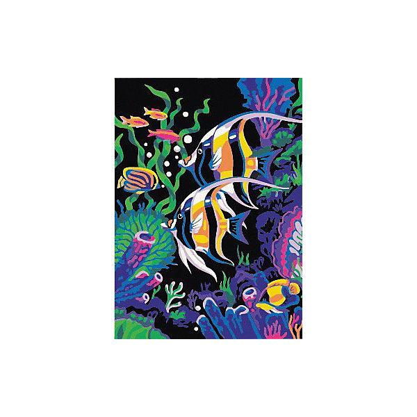 Color KIT Картина по номерам Color KIT Цветные рыбки, 30х40 см