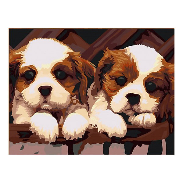 Color KIT Картина по номерам Color KIT Щенки, 30х40 см цветной картины по номерам щенки на поляне