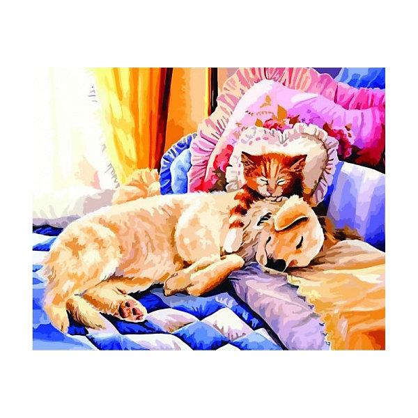 Купить Картина по номерам Color KIT Сладкие сны , 40х50 см, Россия, разноцветный, Унисекс
