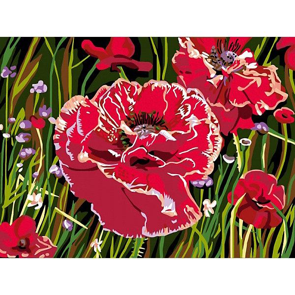 Color KIT Картина по номерам Маков цвет, 30х40 см
