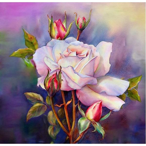 Color KIT Алмазная картина-раскраска Color KIT