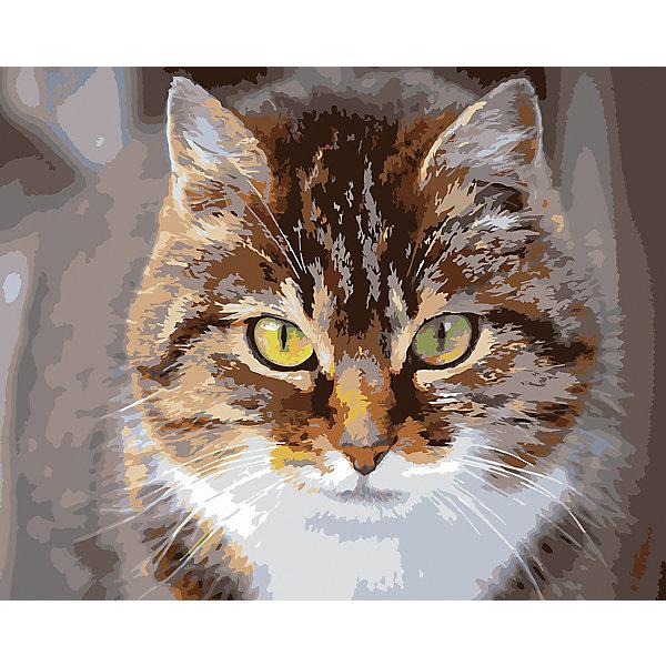 Фрея Картина по номерам на холсте Фрея Охотник, 50х40 см