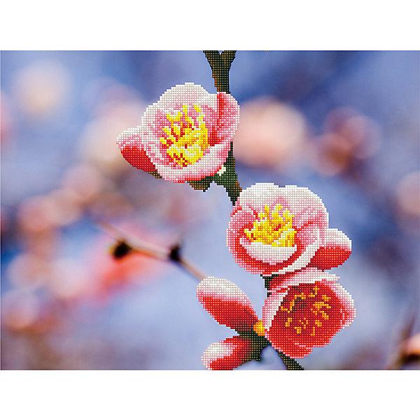 Фрея Алмазная мозаика Фрея Цветущий абрикос, 52х39,5 см фрея картина по номерам на дереве фрея итальянская набережная 50х40 см