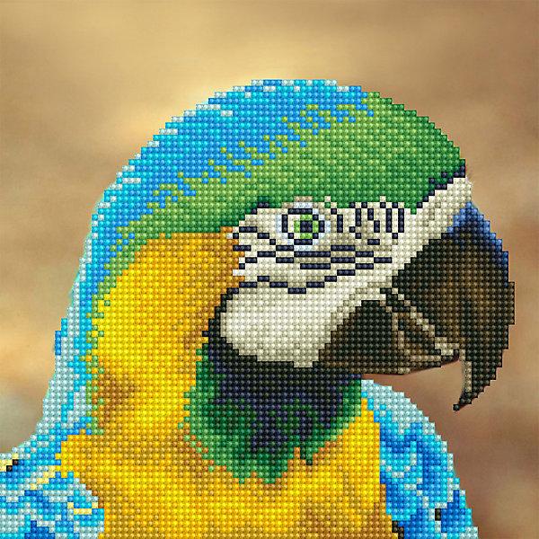Фрея Алмазная мозаика Фрея Попугай, 25х25 см картины в квартиру картина попугай 42х52 см
