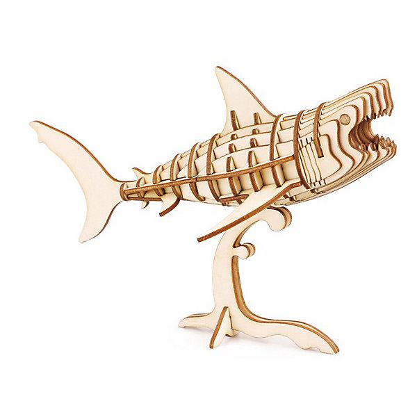 Сборная модель Robotime АкулаДеревянные модели<br>Характеристики товара:<br><br>• возраст: от 3 лет<br>• материал: дерево<br>• количество деталей: 40<br>• размер собранной модели: 16х9х11 см.<br>• размер упаковки: 22х15х0,3 см.<br>• вес: 100 гр.<br><br>Из деталей 3Д пазла получается фигура акулы на подставке. Детали уже подготовлены, соединение происходит паз в паз. Клей не требуется.<br><br>Точная подгонка деталей делает сборку легкой и комфортной. Сборка пазла развивает моторику рук, учит концентрироваться.