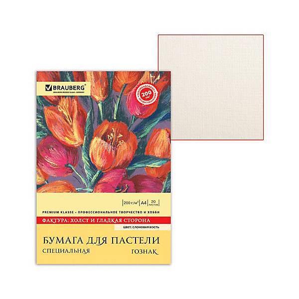Brauberg Папка для пастели А4, 20 листов