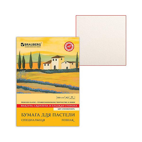 Brauberg Папка для пастели Brauberg А3, 20 листов альбом для пастели палаццо цвет слоновая кость 20 листов формат а4
