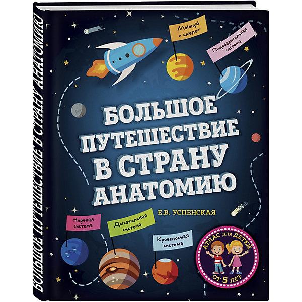 Эксмо Медицинский атлас Большое путешествие в страну Анатомию книги эксмо аниморфозы творческий блокнот