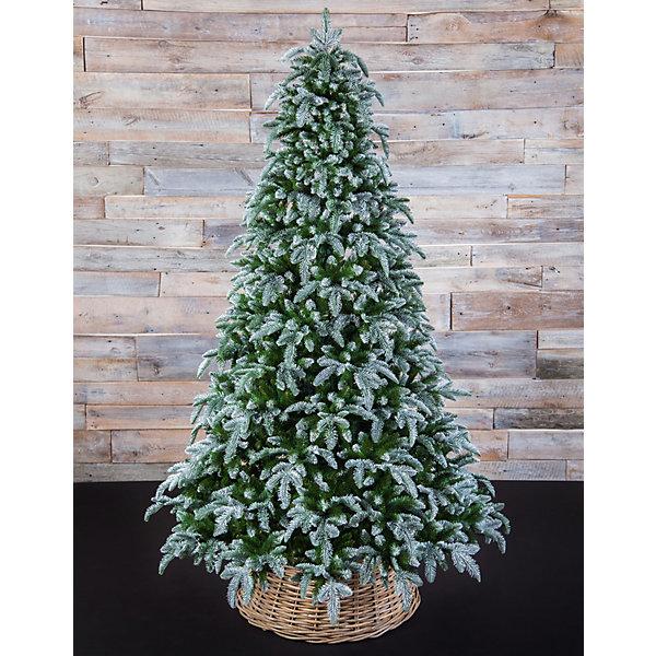 Triumph Tree Нормандия Пушистая, Заснеженная, 185 см.