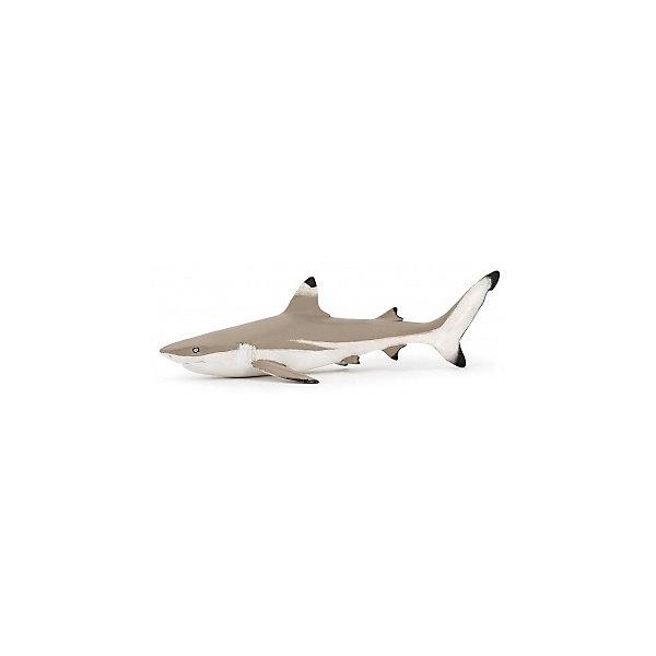papo Фигурка PaPo Рифовая акула papo фигурка papo дилофазаурус