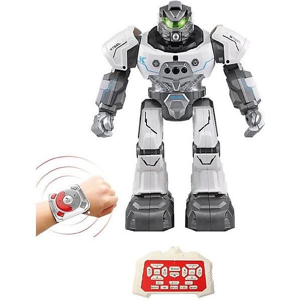 Купить Интерактивный робот Пультовод Плуто на дистанционном управлении, белый, Zhorya, Китай, Мужской
