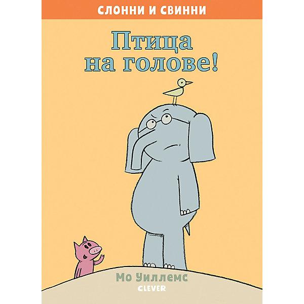Clever Слонни и Свинни Птица на голове!