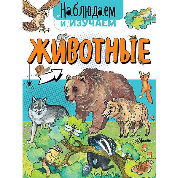 Купить Животные, Аванта, Издательство АСТ, Россия, Унисекс