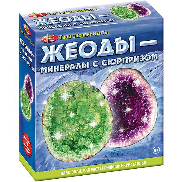 Набор для опытов Твои эксперименты Жеоды-минералы с сюрпризомВыращивание кристаллов<br>Характеристики товара:<br><br>• комплектация: 11 предметов <br>• в наборе: 2 пакетика с красителем, 2 формы ракушки, 2 палочки для перемешивания, пакет с порошком для кристаллов, пакетик с гипсом, защитные очки, мерный стаканчик, книга-инструкция<br>• настоящие химические опыты<br>• яркие цвета <br>• понятные инструкции<br><br>Комплект для опытов представляет собой набор предметов, с помощью которых ребенок может познакомиться с таким природным явлением, как минералы, вырастив собственные жеоды – сияющие кристаллы.