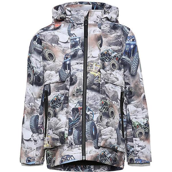 Купить Куртка Molo для мальчика, Китай, разноцветный, 116, 104, 140, 122, 110, 128, Мужской