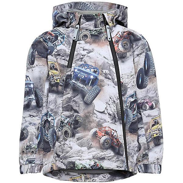 Купить Куртка Molo для мальчика, Китай, разноцветный, 98, 140, 116, 128, 110, 104, 122, Мужской