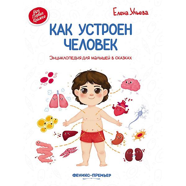 Феникс-Премьер Энциклопедия для малышей Как устроен человек, в сказках