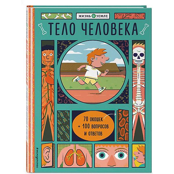 Эксмо Книжка с окошками