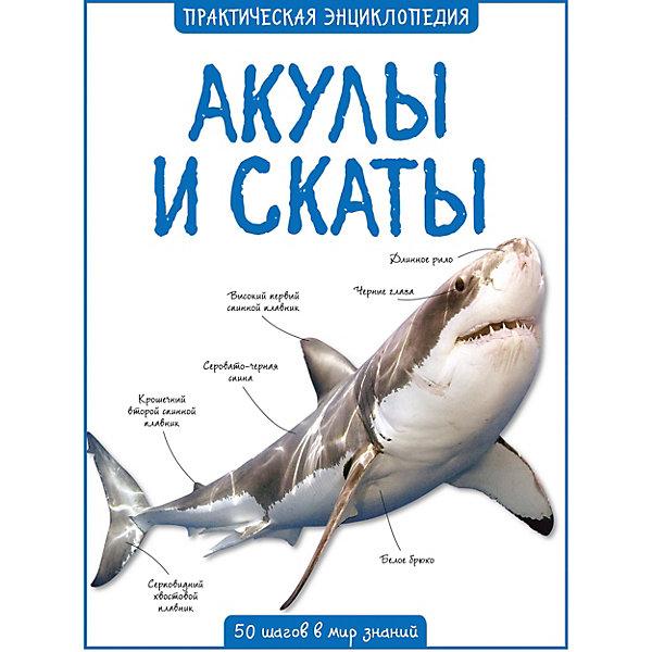 Энциклопедия Махаон