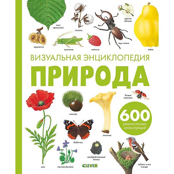 Clever Визуальная энциклопедия Природа, Бадреддин Д.
