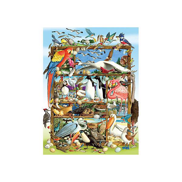 Cobble Hill Пазл Птицы мира, 400 деталей