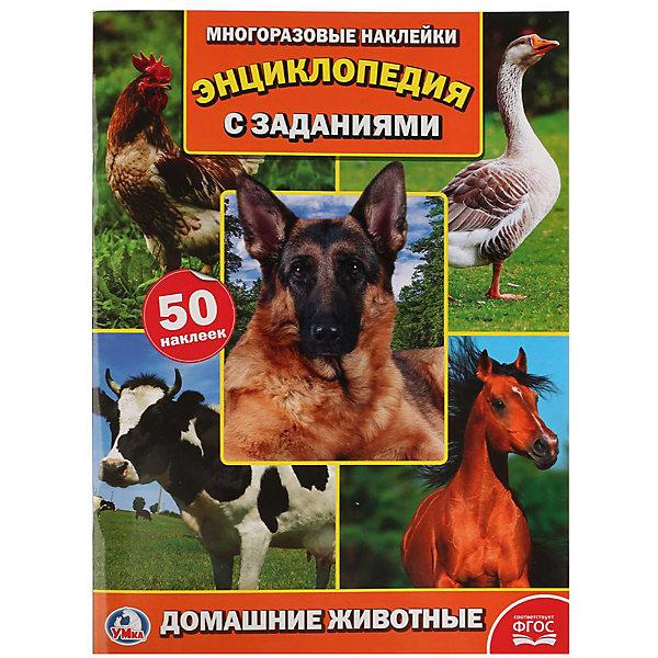 Купить Энциклопедия с наклейками А4 Домашние животные , Умка, Россия, Унисекс
