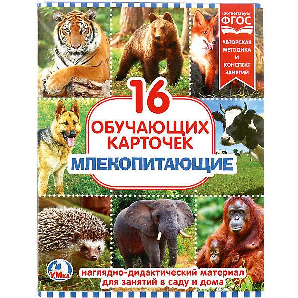 Умка Обучающие карточки «Млекопитающие»