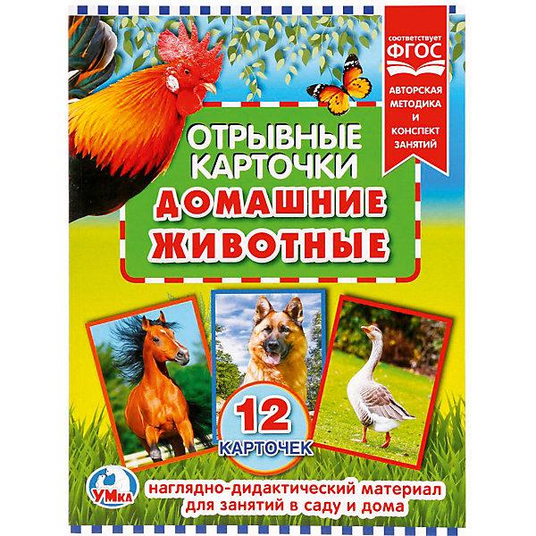 Умка Отрывные карточки «Домашние животные»