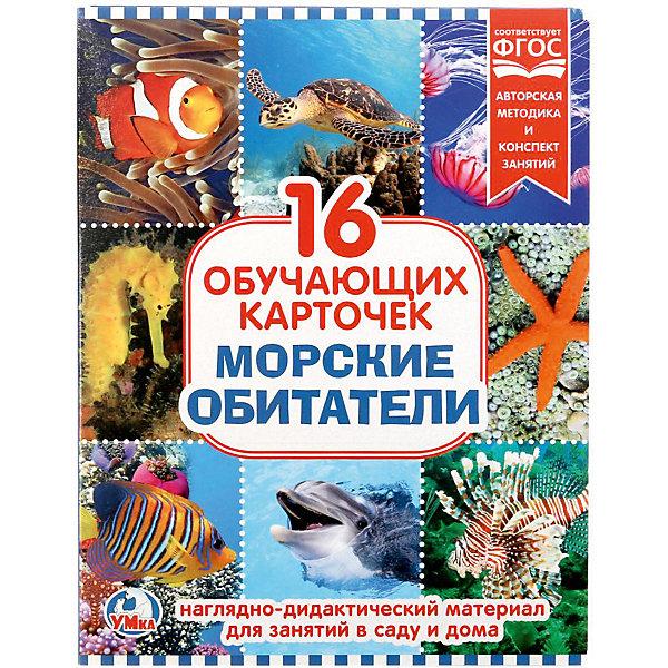 Умка Обучающие карточки «Морские обитатели»