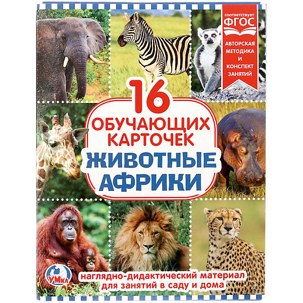 Умка Обучающие карточки «Животные Африки»