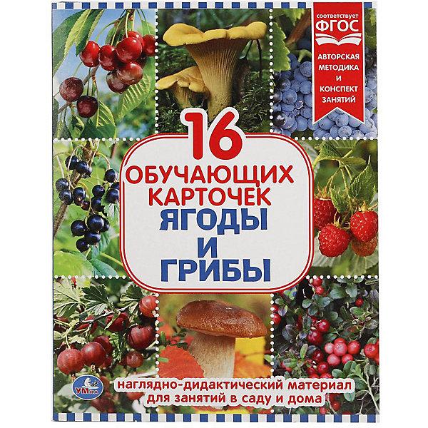 Умка Обучающие карточки «Ягоды и грибы»