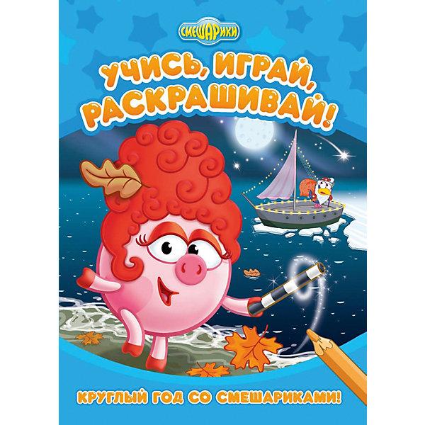 ND Play Развивающая книга «Смешарики. Круглый год со Смешариками»