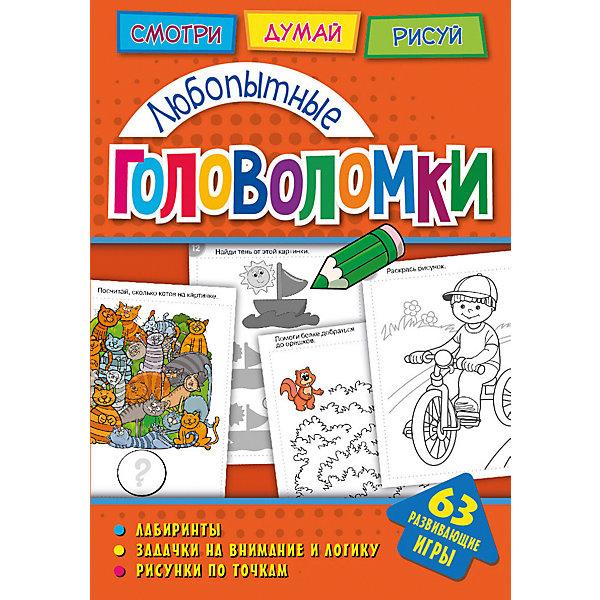Развивающая книга «Головоломки. Любопытные головоломки» ND Play
