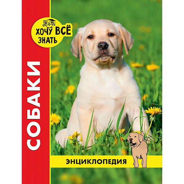 Проф-Пресс Энциклопедия Хочу все знать, Собаки