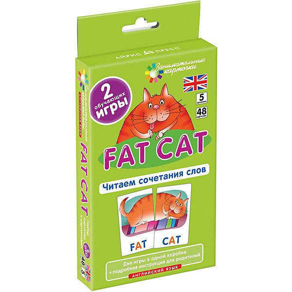 АЙРИС-пресс Занимательные карточки Английский язык: Толстый кот (Fat Cat) Level 5, Клементьева Т.