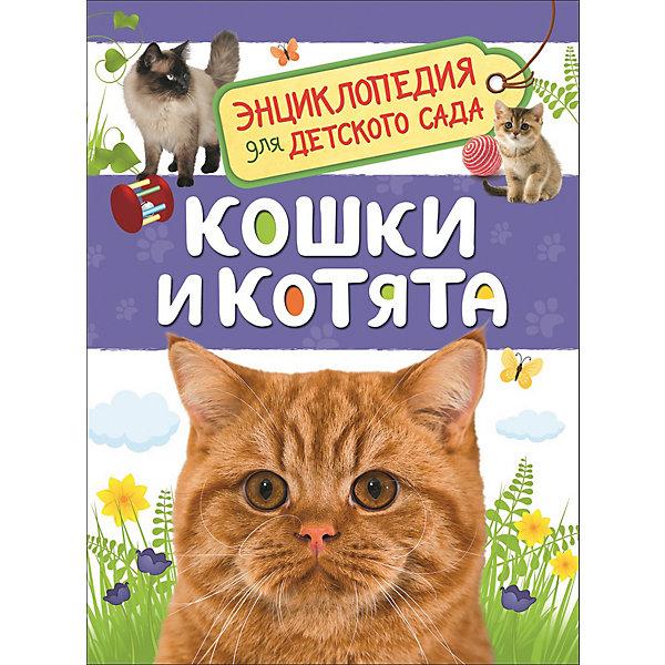 Росмэн Энциклопедия для детского сада Кошки и котята