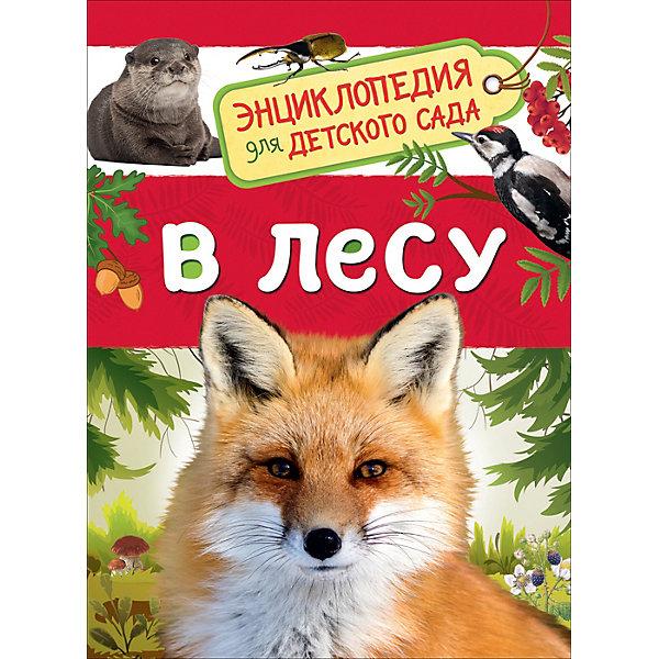 цена на Росмэн Энциклопедия для детского сада