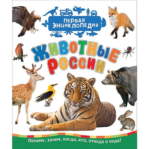 Росмэн Первая энциклопедия Животные России