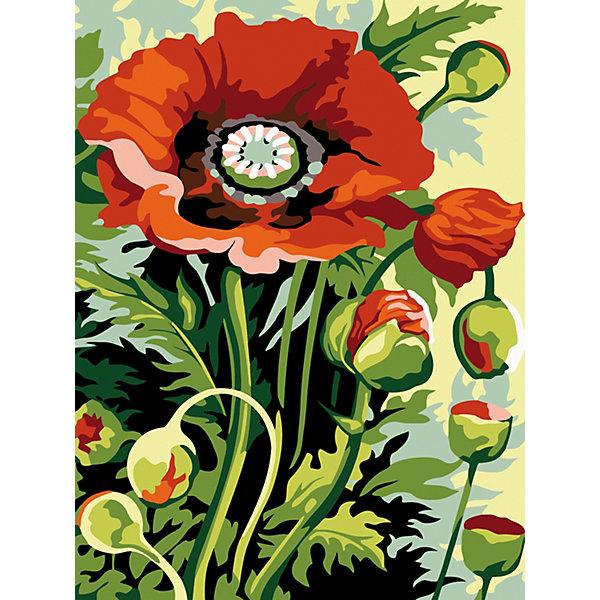 Color KIT Картина по номерам Полевой букет