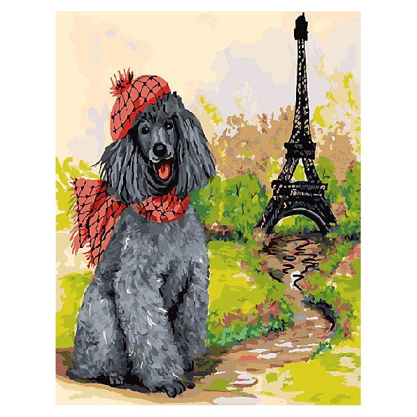 Color KIT Картина по номерам Пудель - парижанин