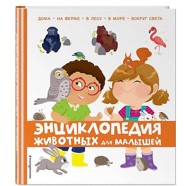 Энциклопедия животных Эксмо для малышей