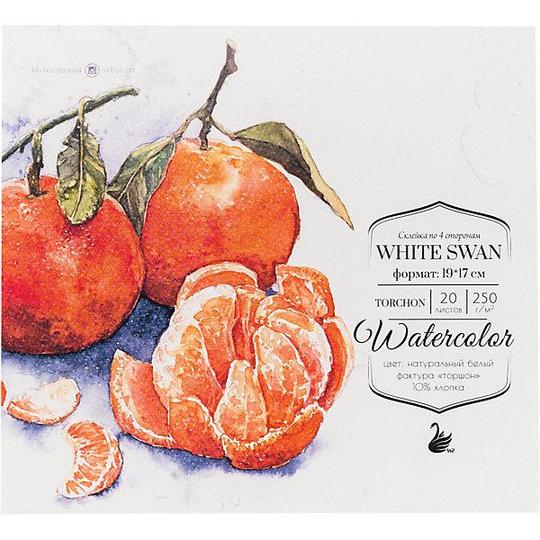 Малевичъ Склейка для акварели White Swan, 250 г/м, 19х17 см, 20 листов