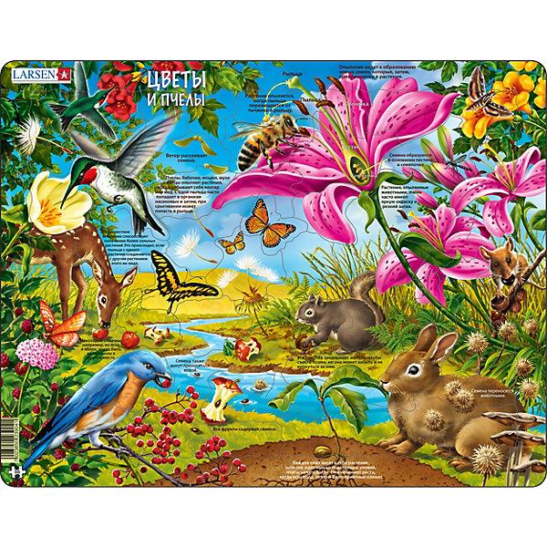 Пазл Larsen Цветы и птицыПазлы для малышей<br>Характеристики:<br><br>• количество элементов: 55<br>• размер собранного пазла: 36,5х28,5 см<br>• материал: картон<br>• страна бренда: Норвегия<br><br>Красочный пазл с оригинальной формой элементов отлично тренирует логическое мышление, воображение и мелкую моторику. Изображение дополнено разнообразными фактами об окружающей среде. Изготовлен из плотного материала и расположен на подложке.