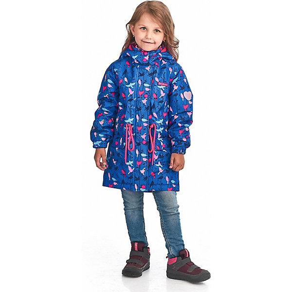 """Куртка Premont """"Весенняя вильсония"""" для девочки, Синий"""
